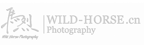 WildHorse Photography馬烈摄影